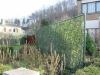 2006 Kessel-lo - Klimopscherm